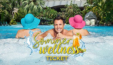 Therme Erding Sommer Wellness Ticket