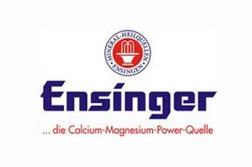 Therme Erding Ensinger